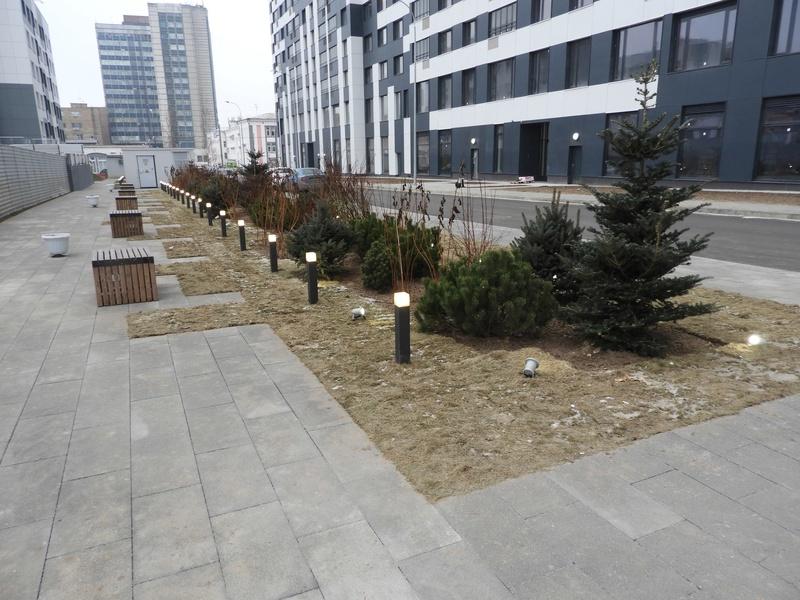 Фото-видеообзоры благоустройства придомовой территории - первая детская площадка и аллея с мини ботаническим садом 1110