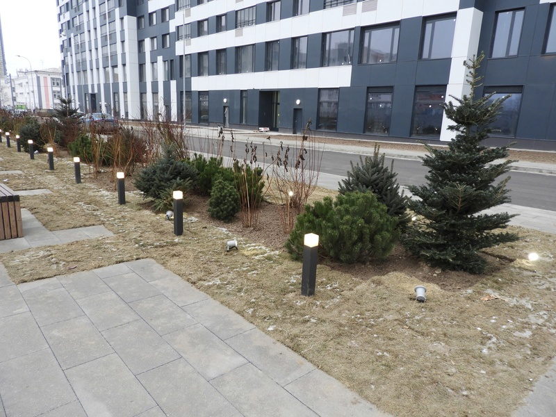 Фото-видеообзоры благоустройства придомовой территории - первая детская площадка и аллея с мини ботаническим садом 1210