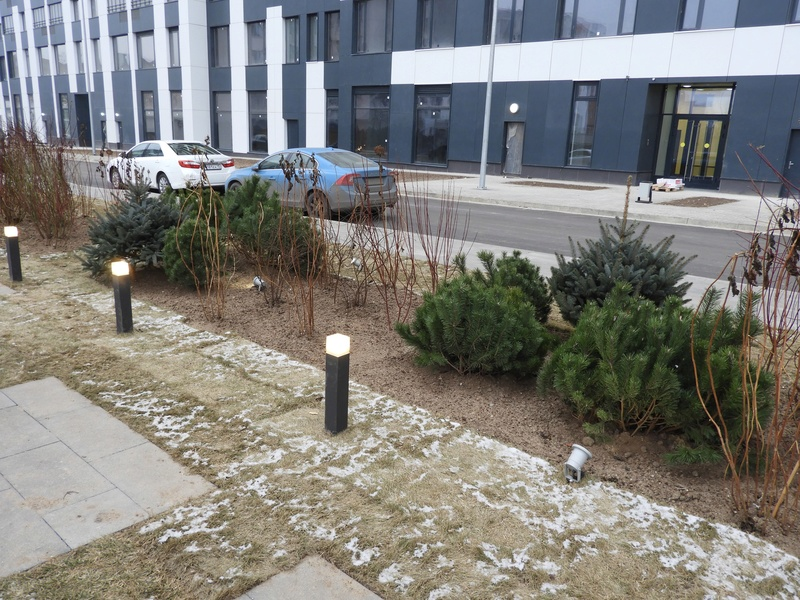 Фото-видеообзоры благоустройства придомовой территории - первая детская площадка и аллея с мини ботаническим садом 1610