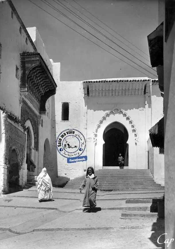 أرى سلا / مصطفى الشليح 28166510