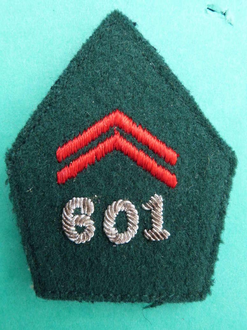 Ecussons de col à identifier P1200929