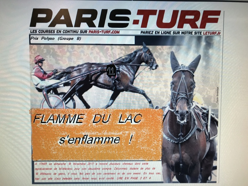 Ecurie Dom.du parc et Dmgb stables  Eefb9510