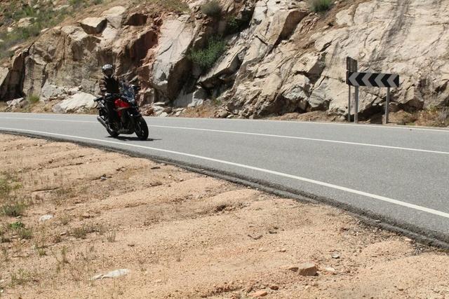 Escursión por la sierra de Madrid. Cebrer12