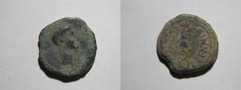 Semis Cartagonova P3201910