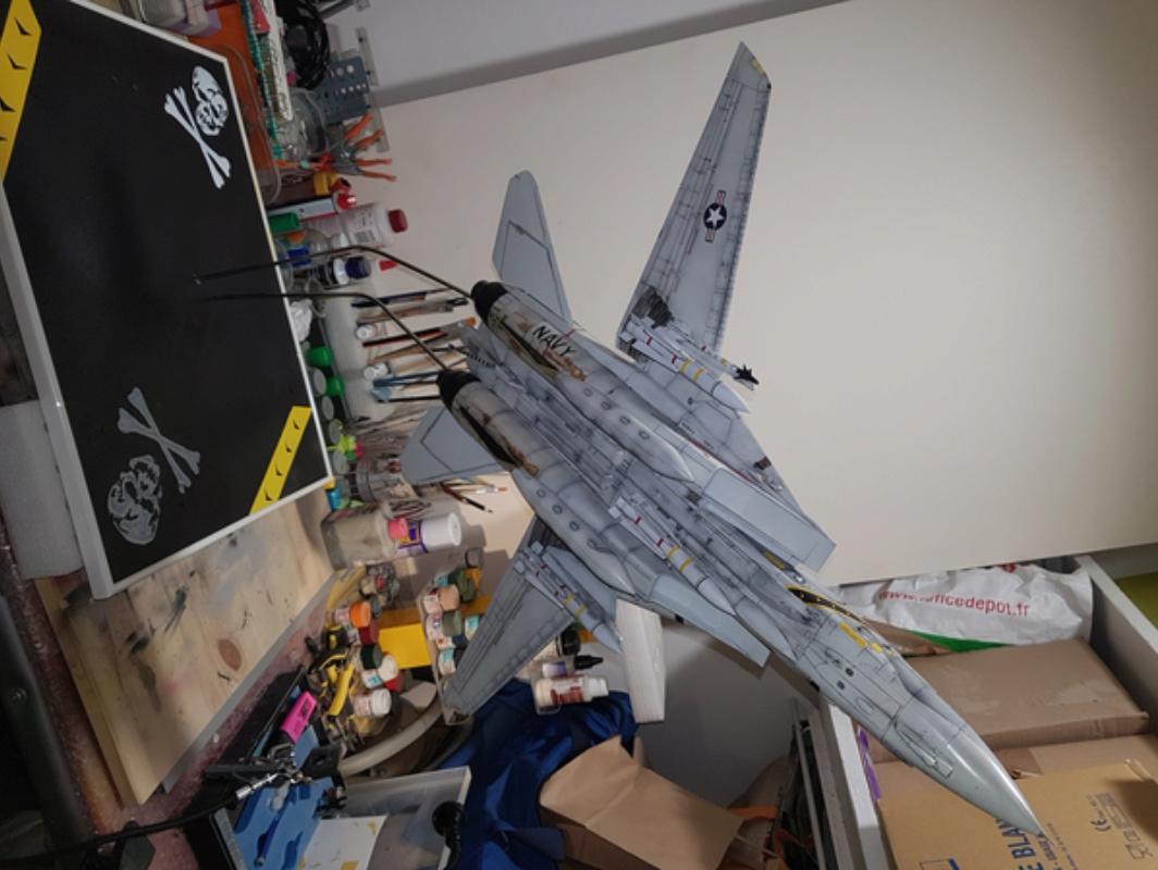 F-14A tamyia 1/32 20180234
