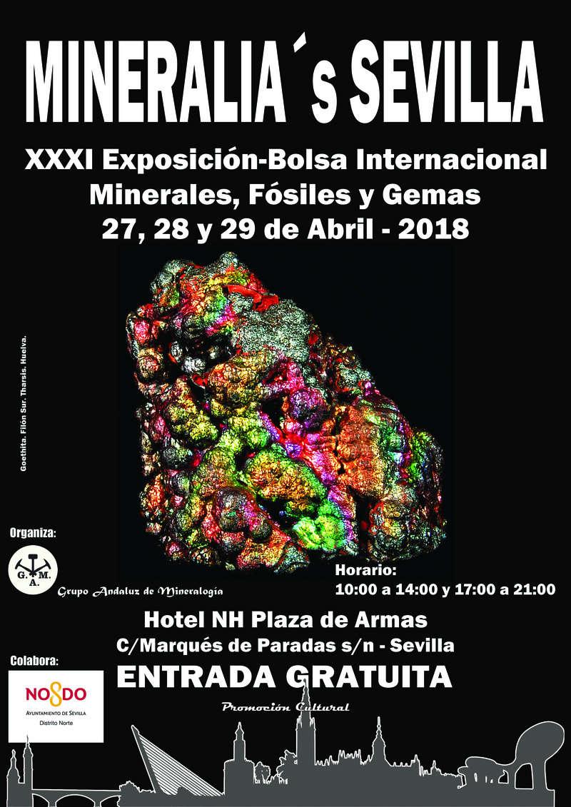 XXXI Exposición-Bolsa Internacional de Minerales, Fósiles y Gemas - Mineralia Sevilla    Cartel11