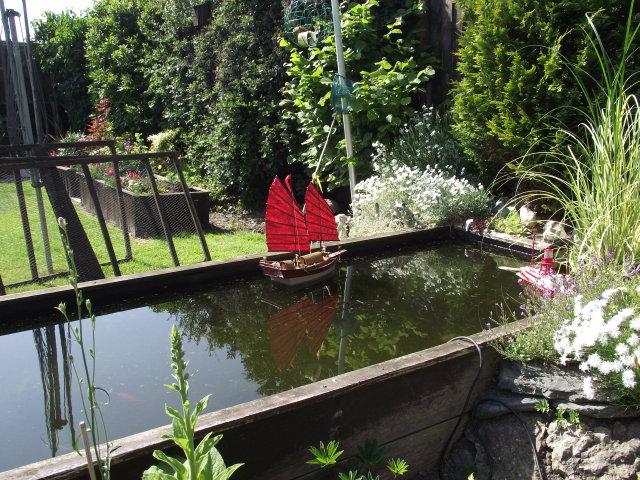 0n the garden pond Dscf8020
