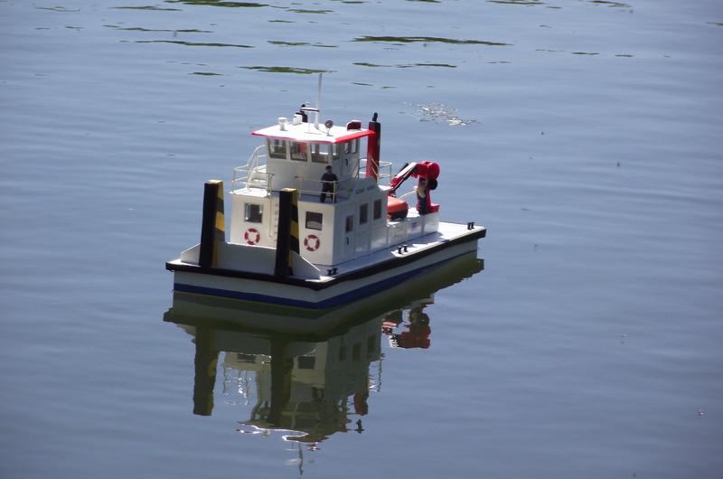down at the lake Dscf8915