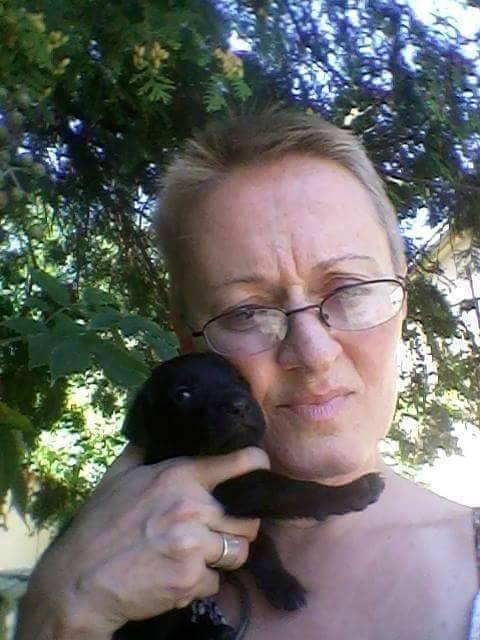 YSIS une toute petite puce noire - BULGARIE 22361410