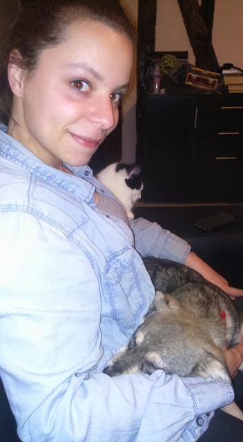 LEELOO adorable petite chiot tricolore - BULGARIE 24251910