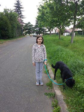ALIB un chien merveilleux - BULGARIE 31486610