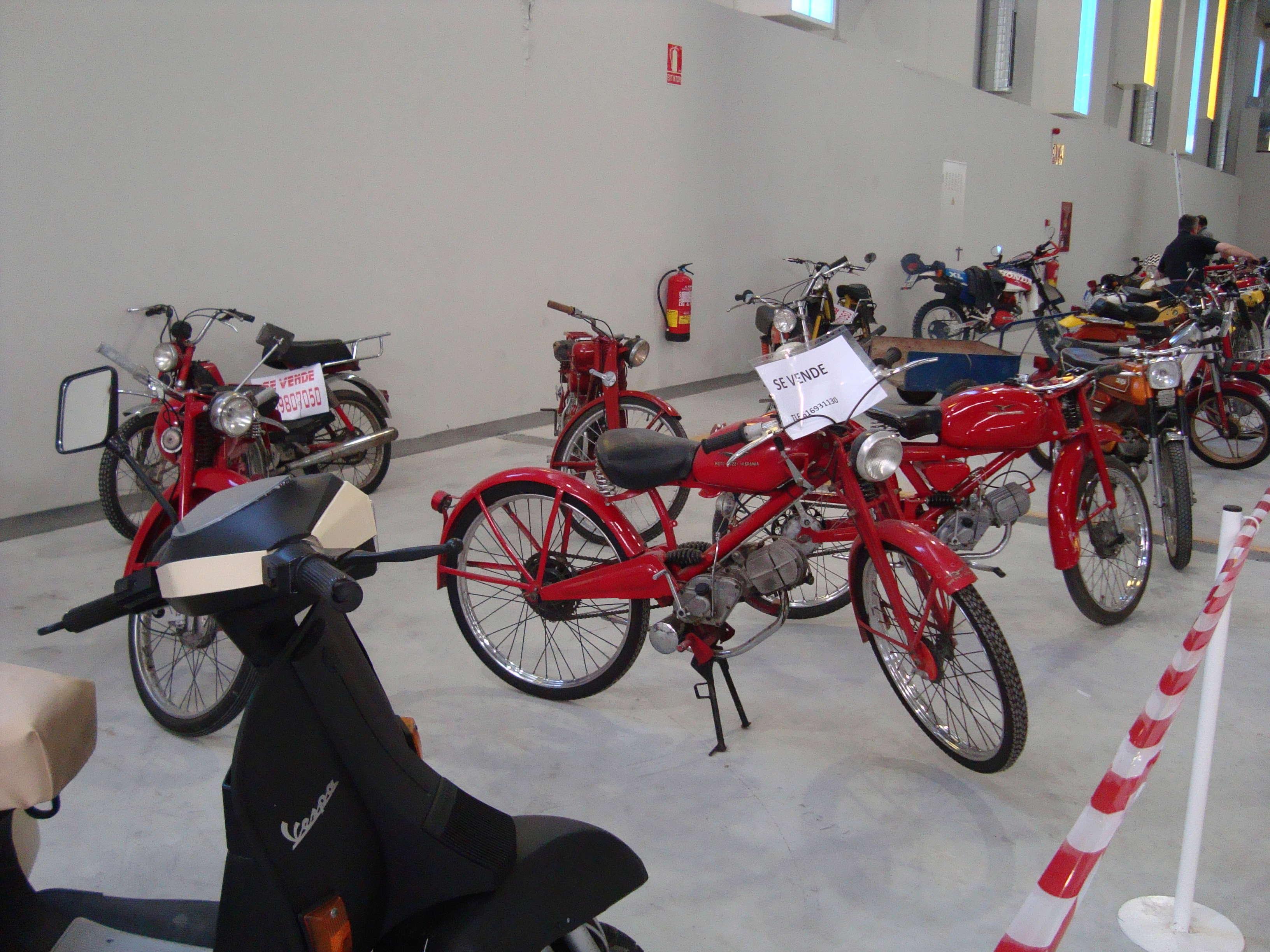 A la Feria de Ejea con las Puch por 2ª vez Dsc02417