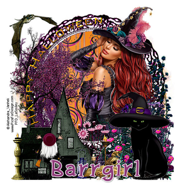 Prezzies for Barrgirl Barrgi15
