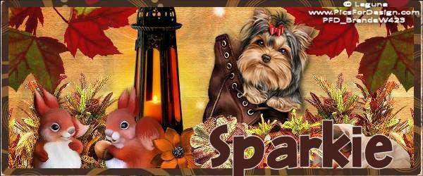 PREZZIES FOR SPARKIE Sparki15