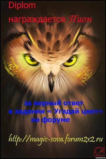 Дипломы за Угадайку Ptica_13