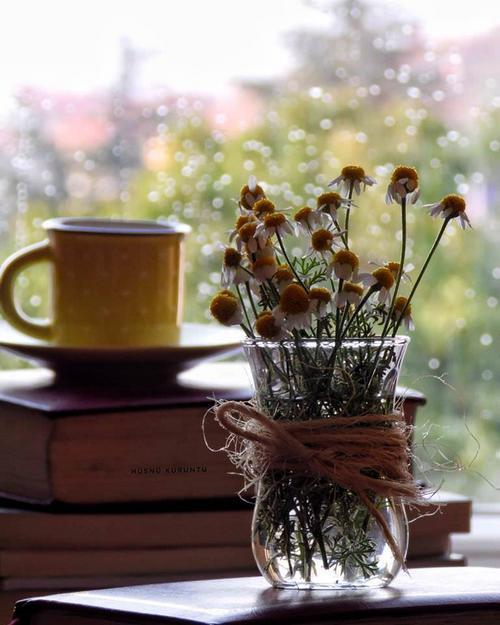 najromanticnija soljica za kafu...caj - Page 7 Znxjqz10