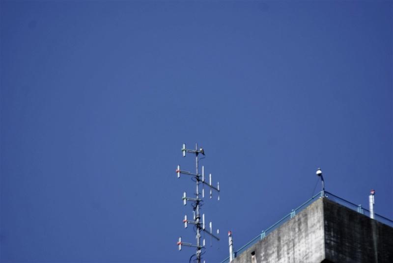 Rond om de toren Dsc02710