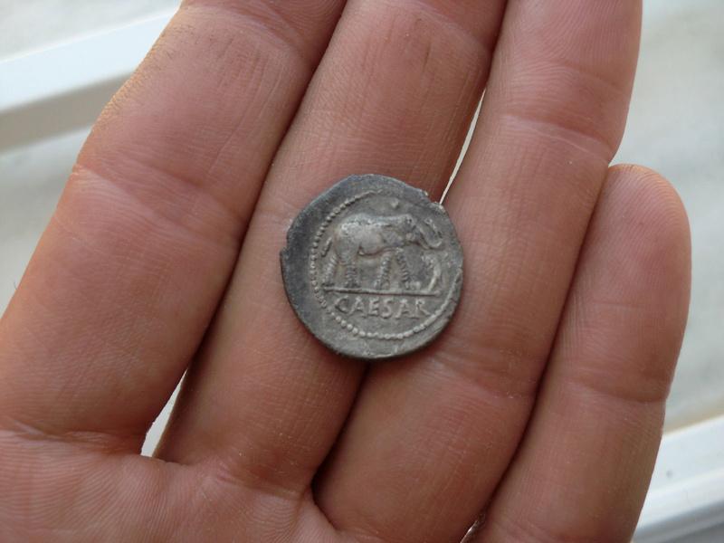 Denario Forrado de Julio César. Elefante Denari12