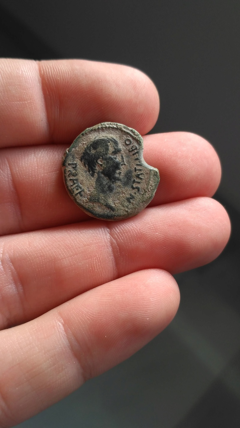 Semis de Sacerdos siglo I a.C. Img-2013