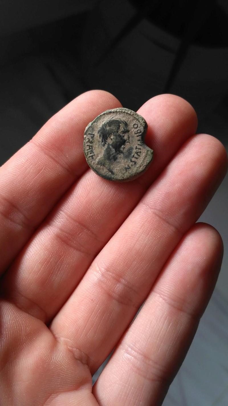 Semis de Sacerdos siglo I a.C. Img-2014