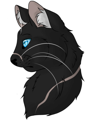 Warrior Cats Journaal! Rrp7zb10