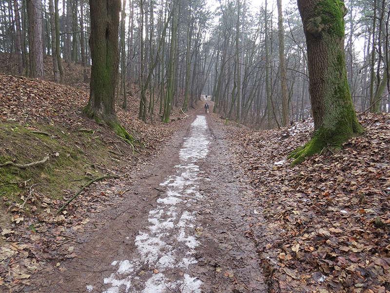 Trenčín - nevýslovná pevnosť Považia Img_9015