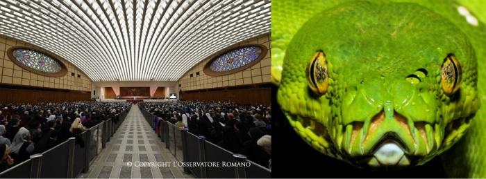 Темные секреты конференц-зала Папы Римского! 2-2-e110
