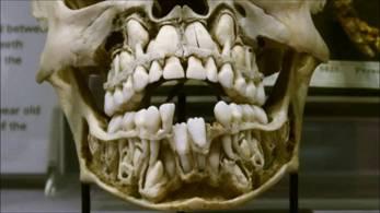 Мегаобновление Кори Гуда: Раса Древних Строителей – возвращение наследия человечества за миллиарды лет. Часть 2 390_3911