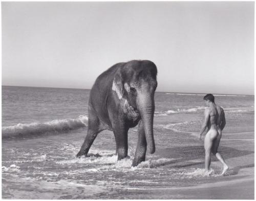 Naturisme en compagnie d'animaux  - Page 6 Tumblr34