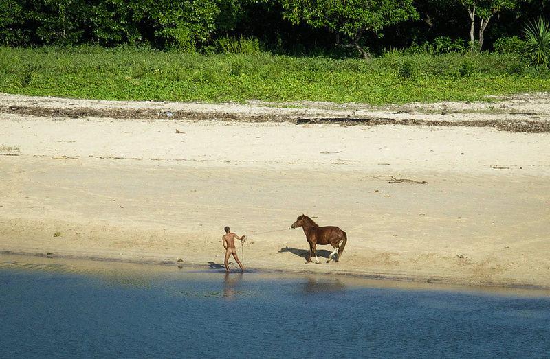 Naturisme en compagnie d'animaux  - Page 9 Tumblr57