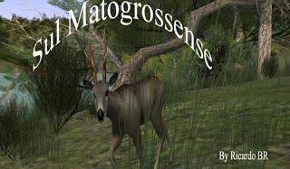 hunter - IMAGENES DE MAPAS DEER HUNTER 2005 BRASIL OFICIALES Sul_ma10