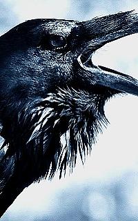 Salvatore Boarding School Raven-10