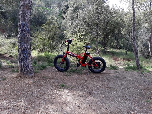 Presenta tu bici eléctrica - Página 22 Xx_peq10