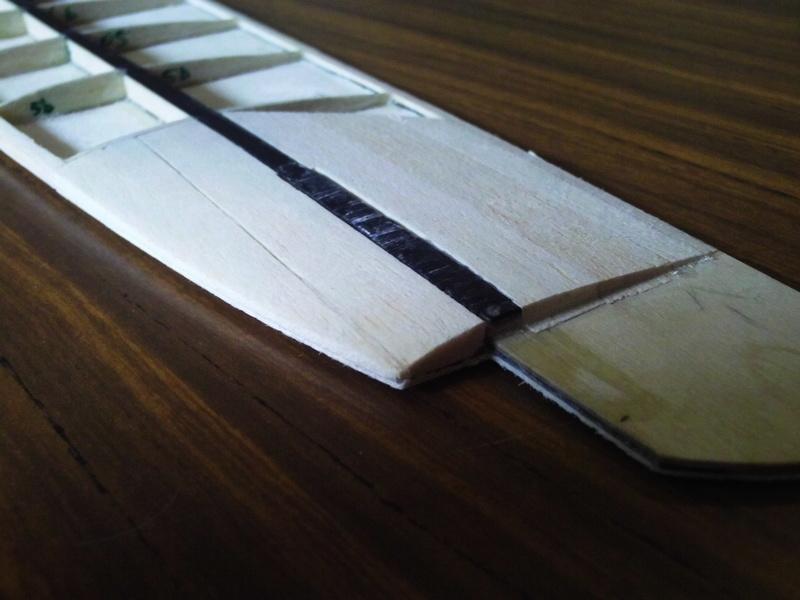 SALopard, le DLG en bois! Img_0112
