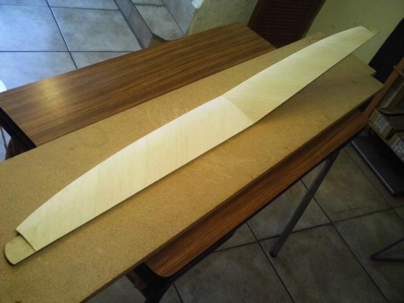 SALopard, le DLG en bois! Img_0117