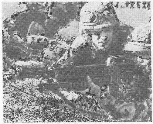 Офицерские игры (литература) Swo19914