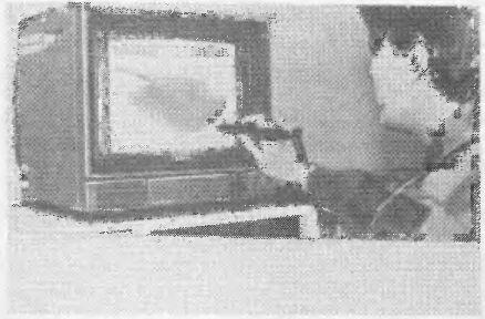 Офицерские игры (литература) Swo19916