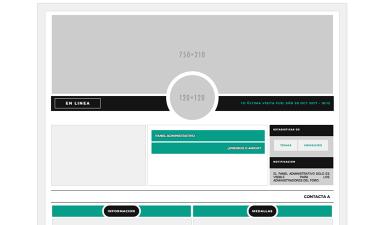 Reorganizar la pagina de consulta de los perfiles de usuario Small10