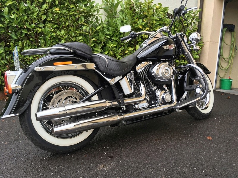 softail deluxe 1584 Img_2212