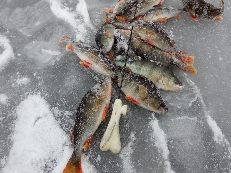 Зимняя рыбалка - Страница 6 Img_2010