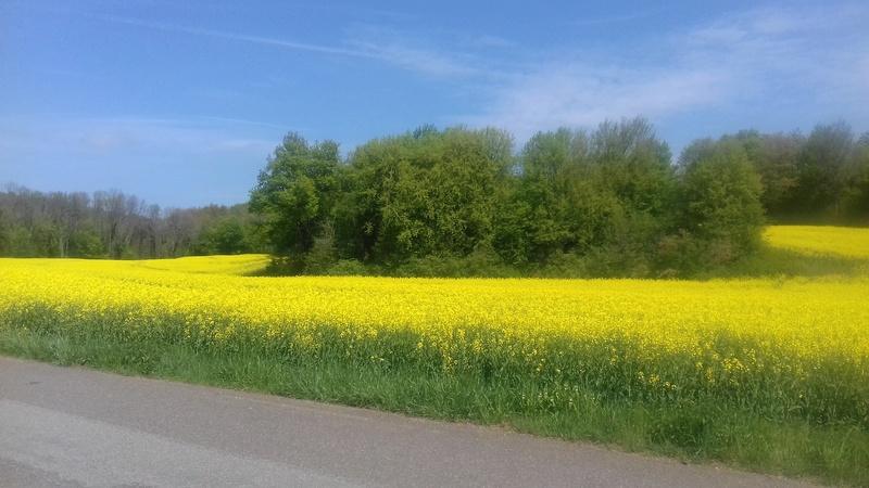 Diagonale du Doubs  29/04/2018 20180421