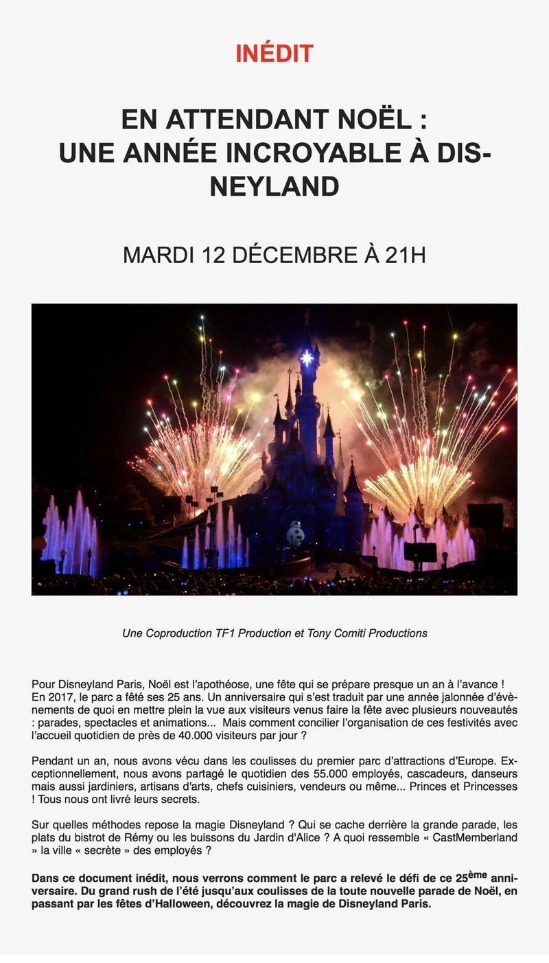 [ Télévision ] «En attendant Noël : Une année incroyable à Disneyland» Mardi 12 décembre à 22h20 sur TMC A0035810