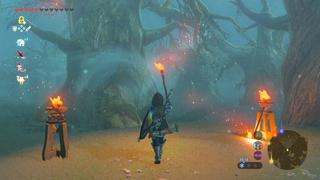 [TEST] L'avis du Veusty : Zelda - Breath of the Wild (Switch) Zeldab10