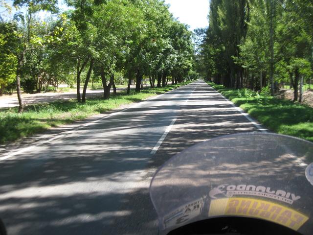 convocatoria y viaje a EL SOSNEADO (Mza.)  2017 Img_1103