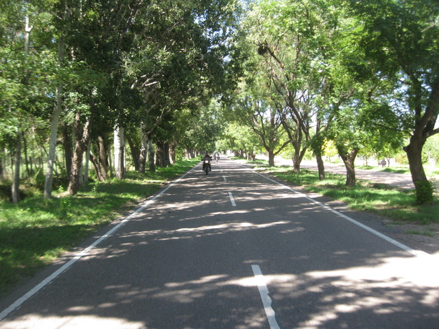 convocatoria y viaje a EL SOSNEADO (Mza.)  2017 Img_1106