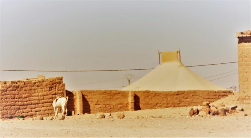 Cuaderno de campo: expedición Campos de Refugiados Saharauis en Tindouf ( Argelia) - Página 4 Dscn1910