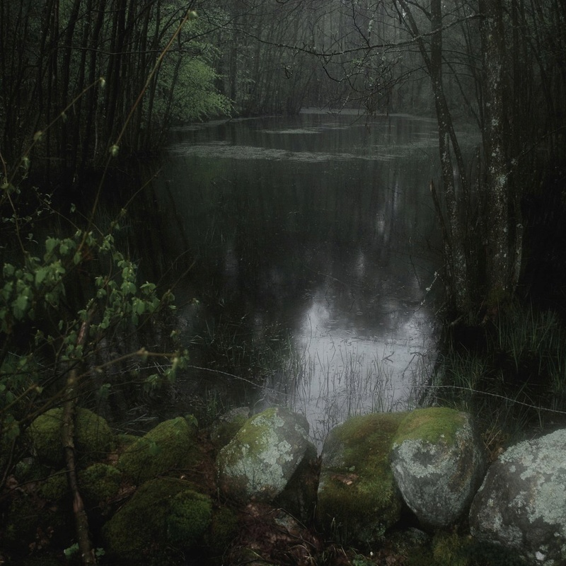 Божества Леса • Леший. Часть III • Гадания и помощники  Fcz0se10