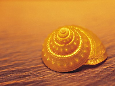 Желтые Пески Kartin10