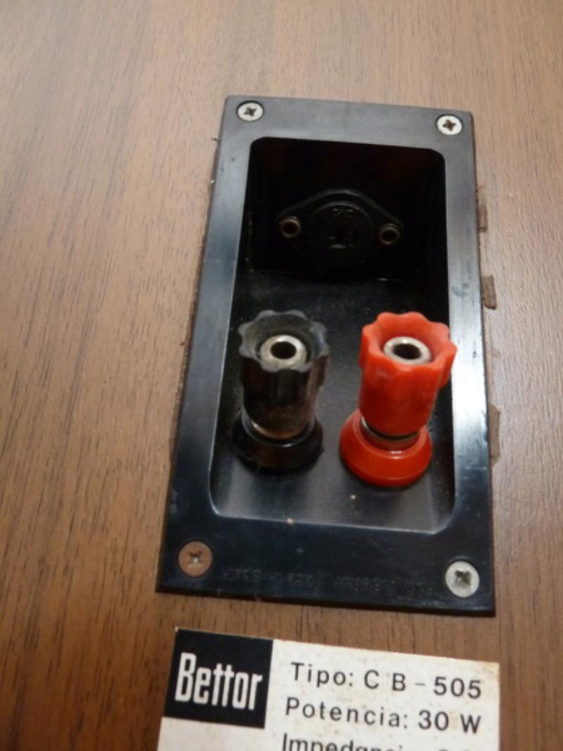 Conectores Punto-Raya P1240710