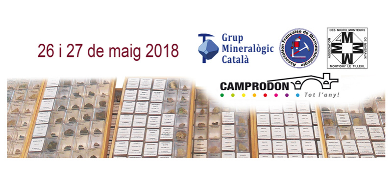 26 i 27 de maig de 2018: III Trobada de Micromineralogia i Sistemàtica Mineral de Camprodon-Rocabruna Banner10